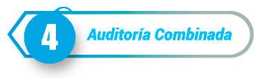 Auditoria-tipo-combinado